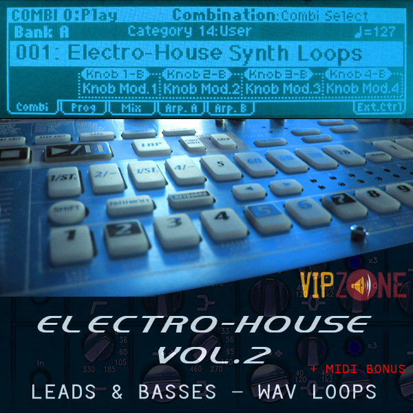 Electro House Synth Loops